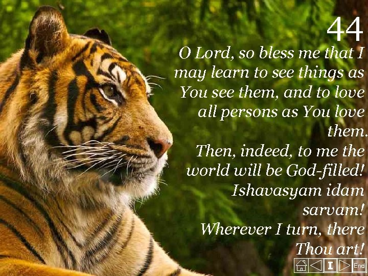 44 O Lord, so bless me that I may learn to see things as