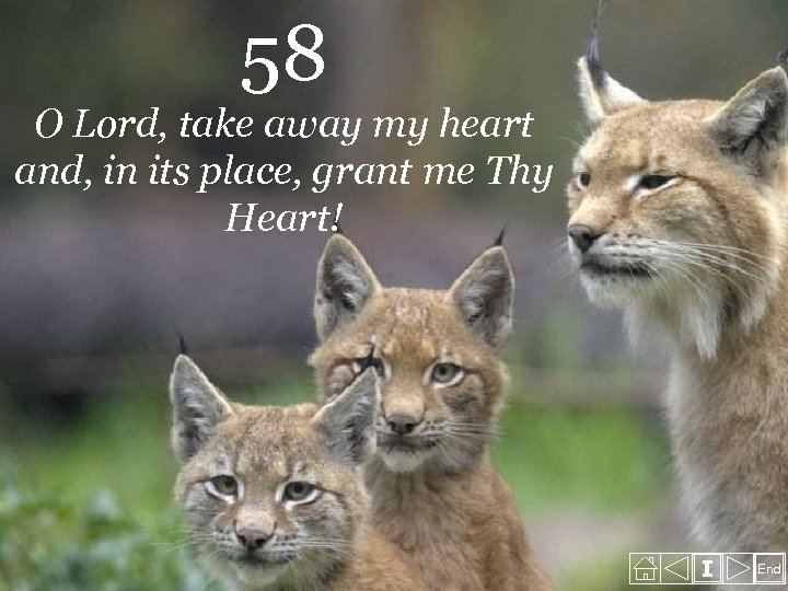58 O Lord, take away my heart and, in its place, grant me Thy