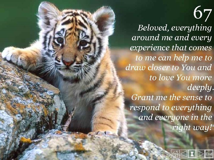 67 Beloved, everything around me and every experience that comes to me can help