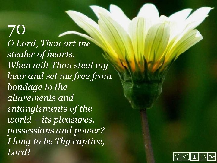 70 O Lord, Thou art the stealer of hearts. When wilt Thou steal my