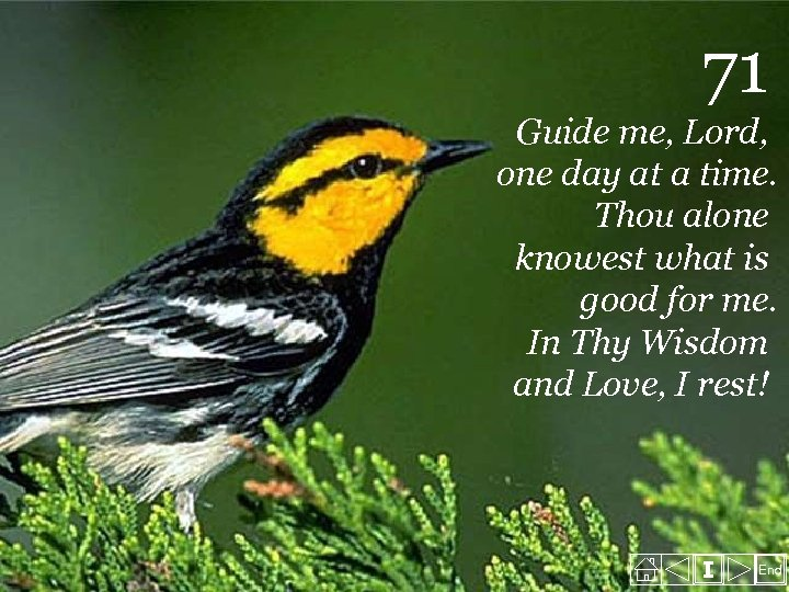 71 Guide me, Lord, one day at a time. Thou alone knowest what is