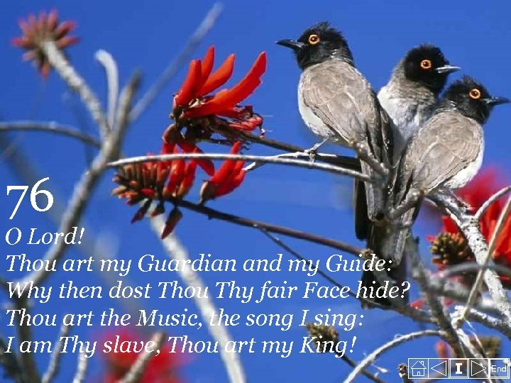 76 O Lord! Thou art my Guardian and my Guide: Why then dost Thou