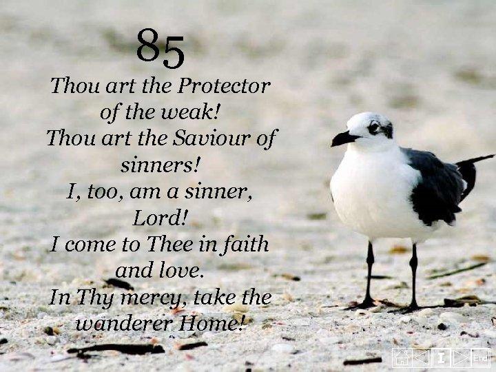 85 Thou art the Protector of the weak! Thou art the Saviour of sinners!