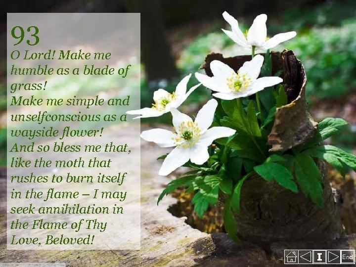 93 O Lord! Make me humble as a blade of grass! Make me simple