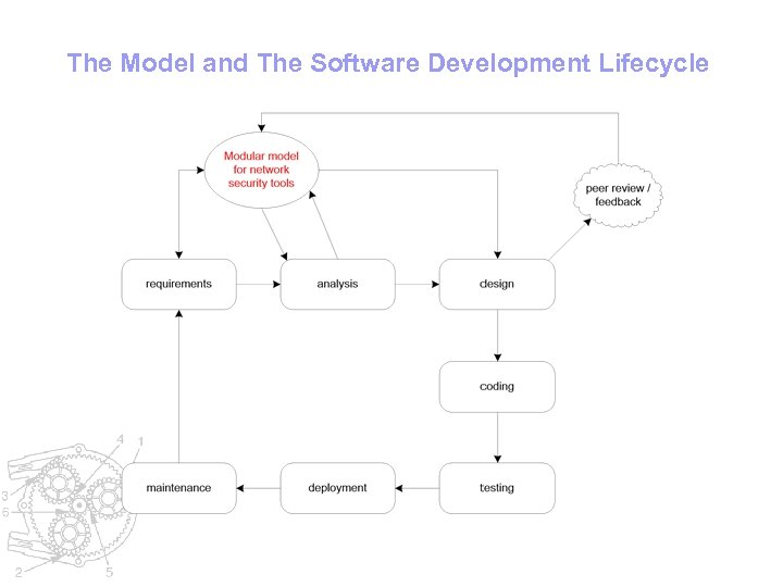 The Model and The Software Development Lifecycle