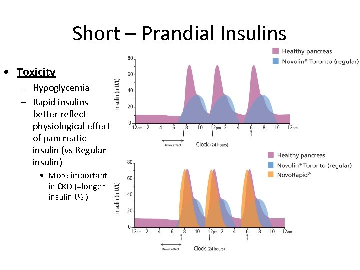 Short – Prandial Insulins • Toxicity – Hypoglycemia – Rapid insulins better reflect physiological