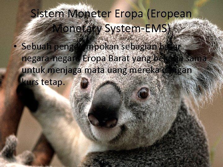 Sistem Moneter Eropa (Eropean Monetary System-EMS) • Sebuah pengelompokan sebagian besar negara-negara Eropa Barat
