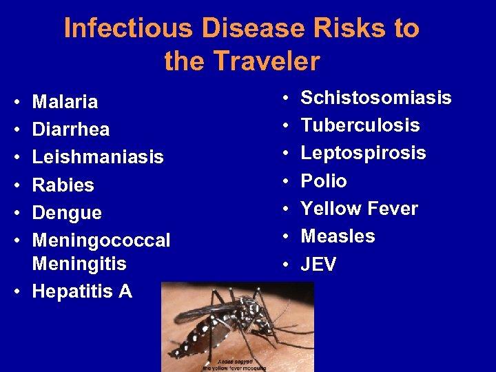 Infectious Disease Risks to the Traveler • • • • Malaria Diarrhea Leishmaniasis Rabies