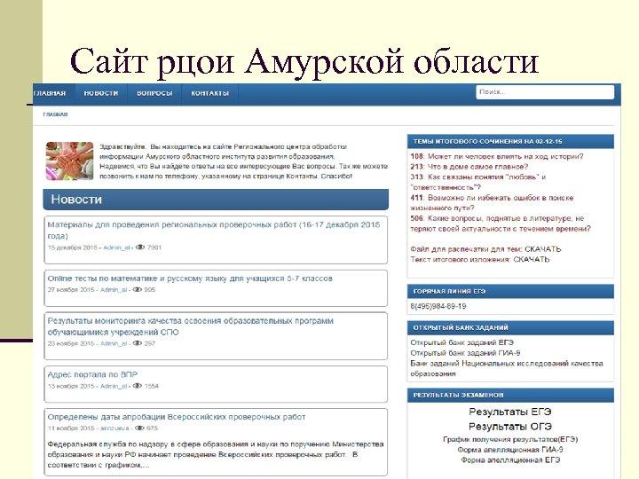 Сайт рцои Амурской области