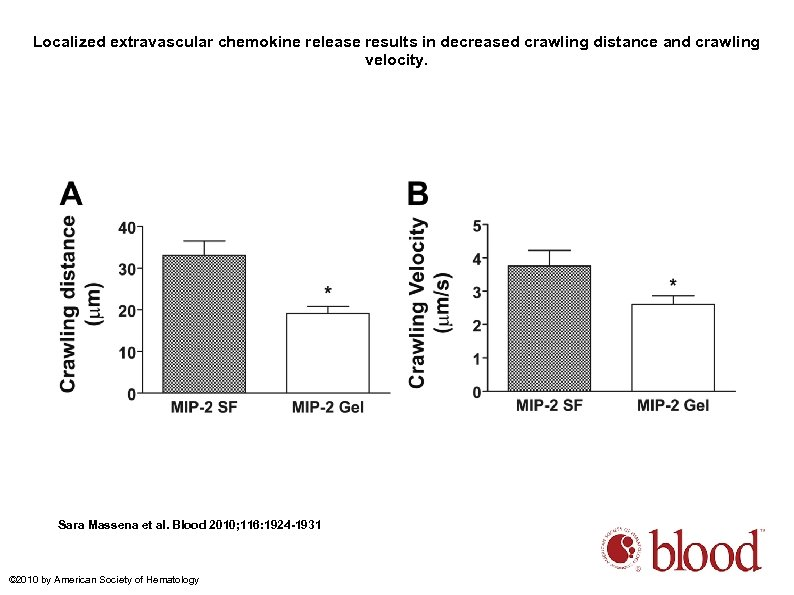 Localized extravascular chemokine release results in decreased crawling distance and crawling velocity. Sara Massena