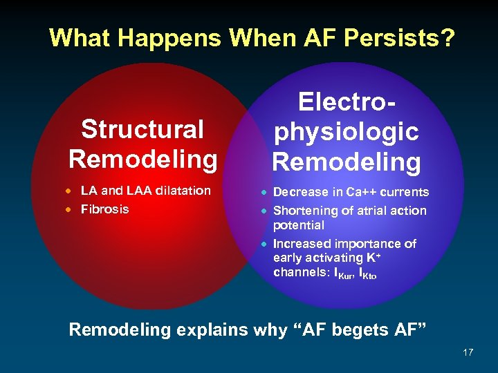 What Happens When AF Persists? Structural Remodeling · LA and LAA dilatation · Fibrosis