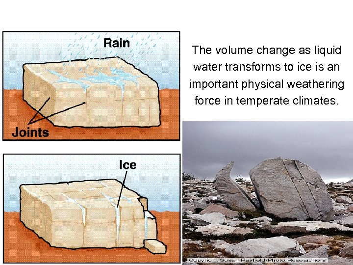 The volume change as liquid water transforms to ice is an important physical weathering