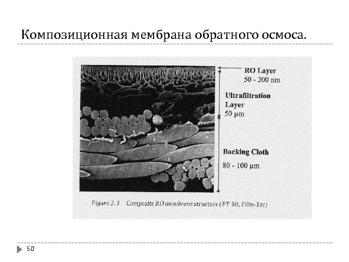 Композиционная мембрана обратного осмоса. 50