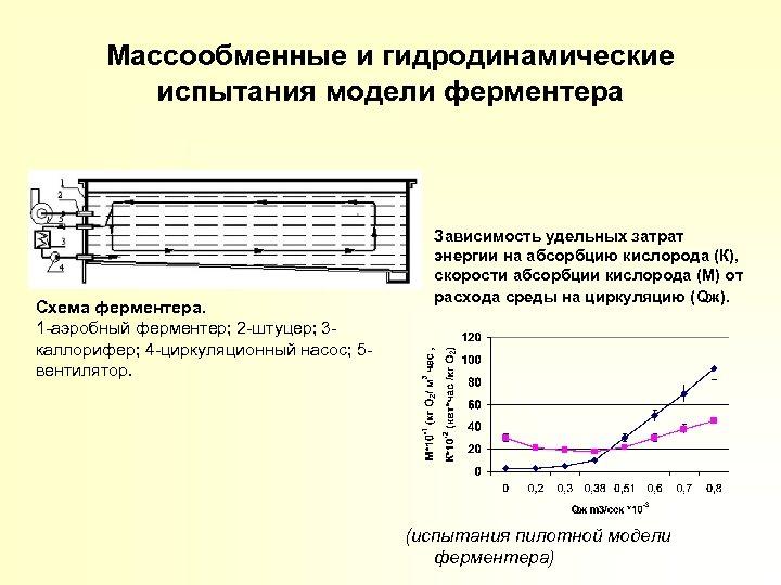 Массообменные и гидродинамические испытания модели ферментера Схема ферментера. 1 -аэробный ферментер; 2 -штуцер; 3