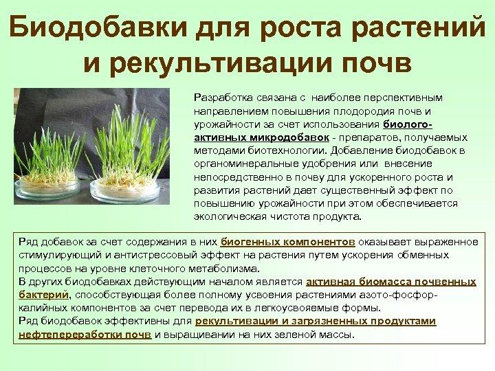 Биодобавки для роста растений и рекультивации почв Разработка связана с наиболее перспективным направлением повышения