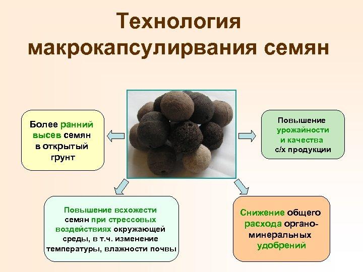 Технология макрокапсулирвания семян Более ранний высев семян в открытый грунт Повышение всхожести семян при