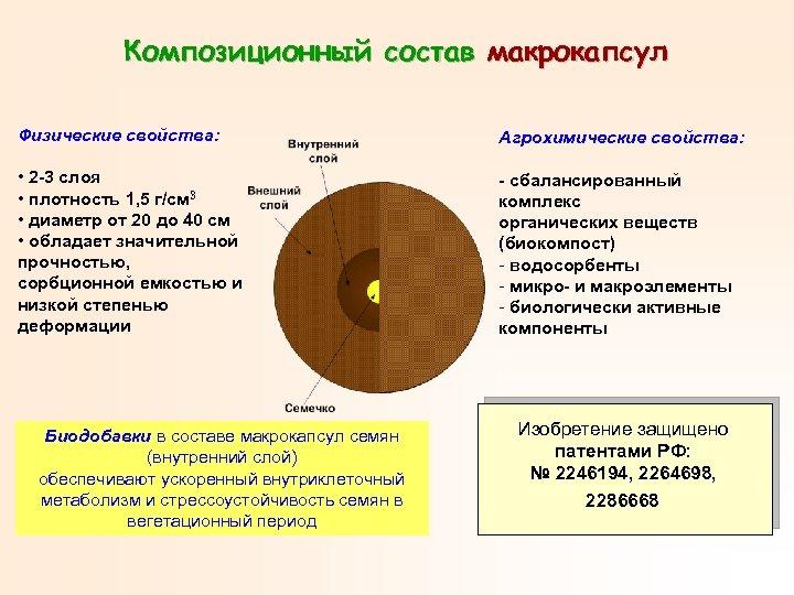 Композиционный состав макрокапсул Физические свойства: Агрохимические свойства: • 2 -3 слоя • плотность 1,