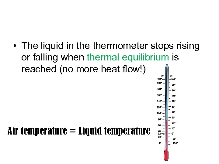 • The liquid in thermometer stops rising or falling when thermal equilibrium is