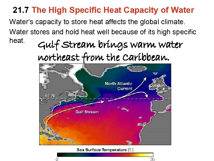 21. 7 The High Specific Heat Capacity of Water's capacity to store heat affects
