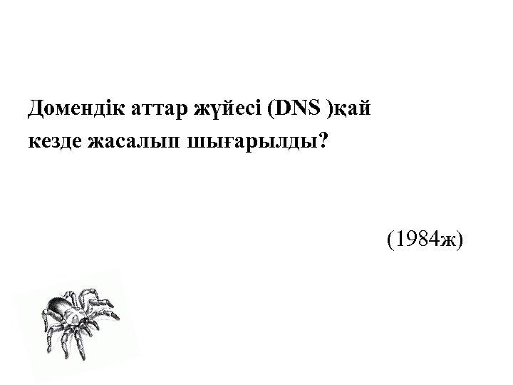 Домендік аттар жүйесі (DNS )қай кезде жасалып шығарылды? (1984 ж)