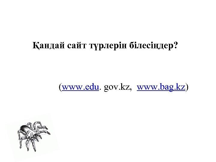 Қандай сайт түрлерін білесіңдер? (www. edu. gov. kz, www. bag. kz)