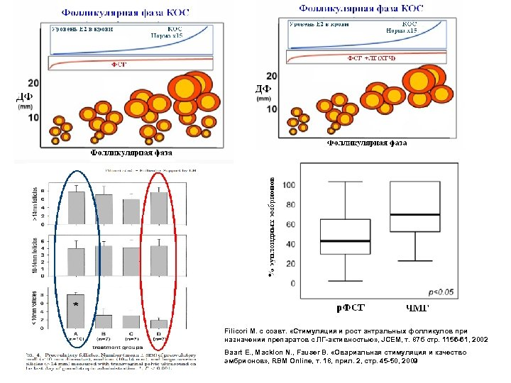 Filicori M. с соавт. «Стимуляция и рост антральных фолликулов при назначении препаратов с ЛГ-активностью»