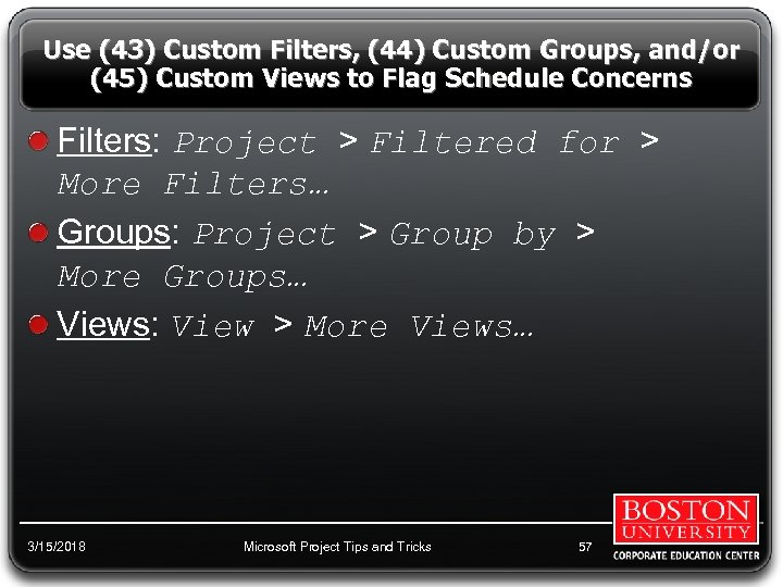 Use (43) Custom Filters, (44) Custom Groups, and/or (45) Custom Views to Flag Schedule