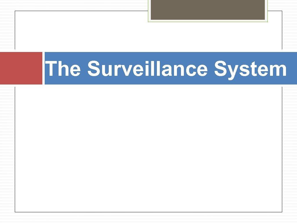 The Surveillance System