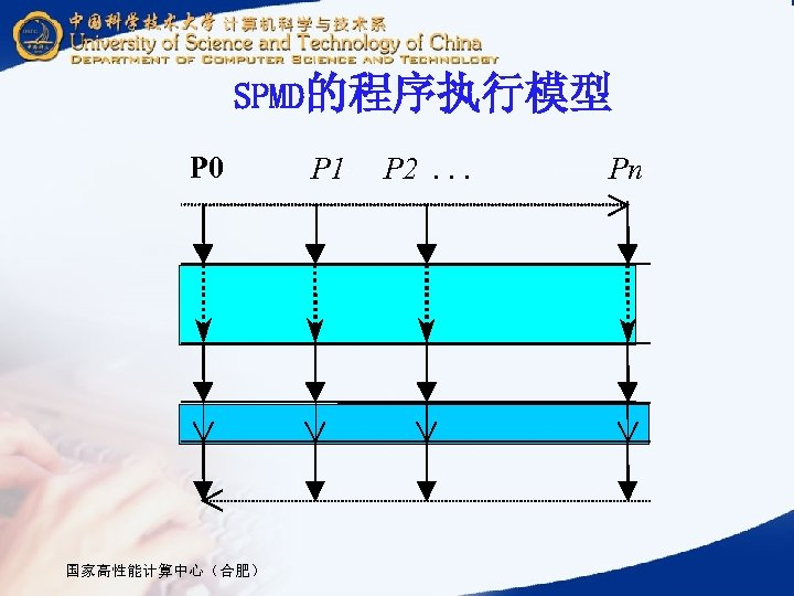 SPMD的程序执行模型 P 0 国家高性能计算中心(合肥) P 1 P 2. . . Pn