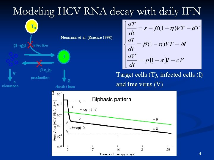 Modeling HCV RNA decay with daily IFN T 0 Neumann et al. (Science 1998)
