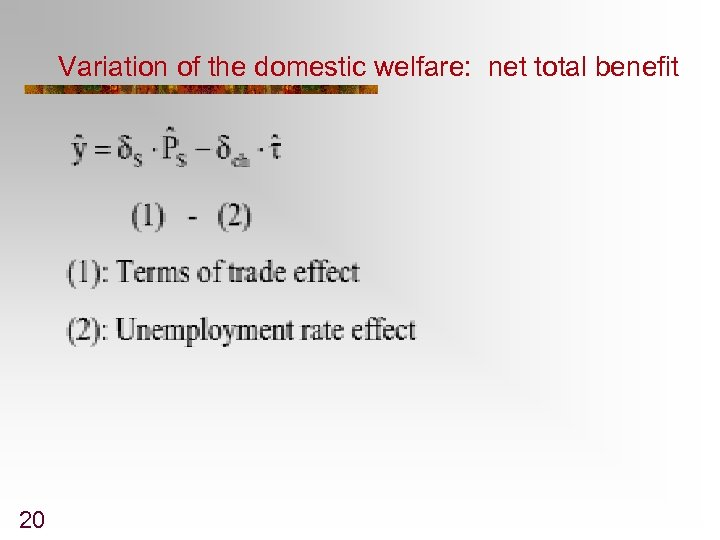 Variation of the domestic welfare: net total benefit 20
