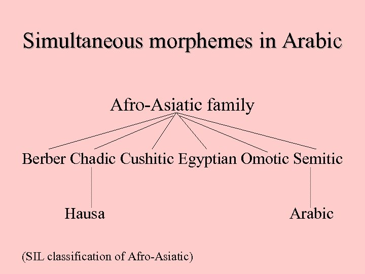 Simultaneous morphemes in Arabic Afro-Asiatic family Berber Chadic Cushitic Egyptian Omotic Semitic Hausa (SIL