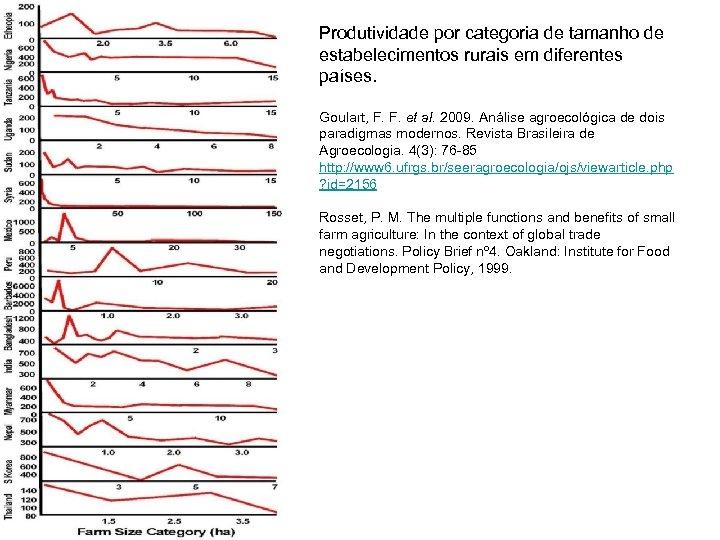 Produtividade por categoria de tamanho de estabelecimentos rurais em diferentes países. Goulart, F. F.