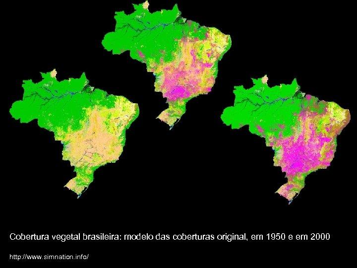 Cobertura vegetal brasileira: modelo das coberturas original, em 1950 e em 2000 http: //www.