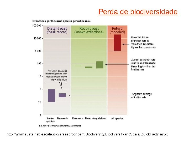 Perda de biodiversidade http: //www. sustainablescale. org/areasofconcern/Biodiversityand. Scale/Quick. Facts. aspx