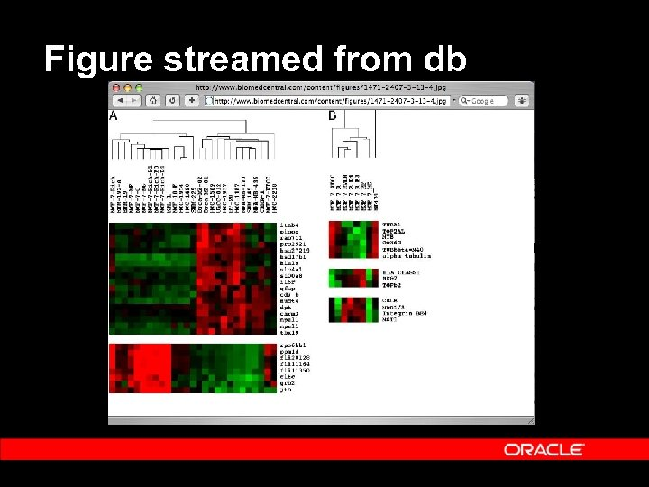 Figure streamed from db