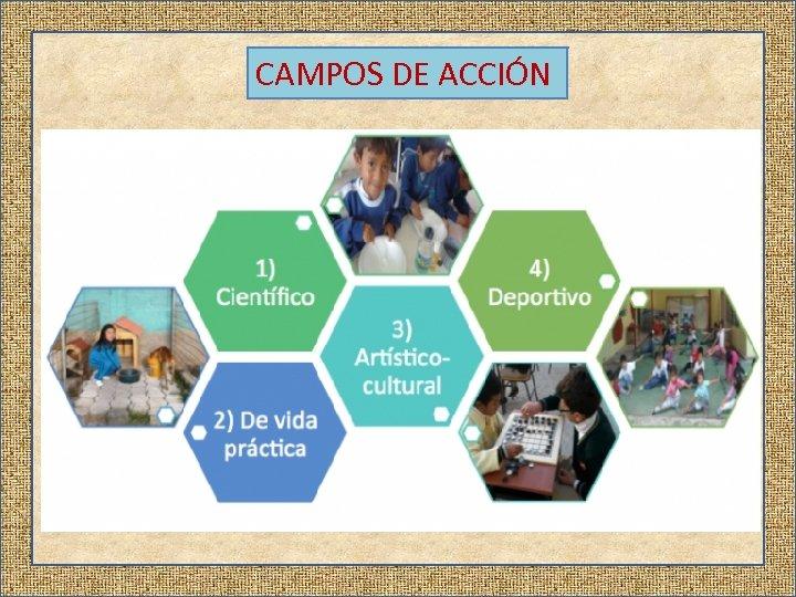 CAMPOS DE ACCIÓN