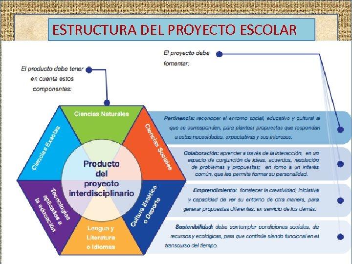 ESTRUCTURA DEL PROYECTO ESCOLAR