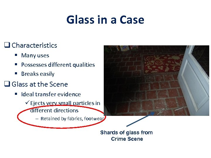 Glass in a Case q Characteristics § Many uses § Possesses different qualities §