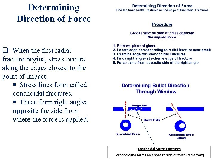 Determining Direction of Force q When the first radial fracture begins, stress occurs along
