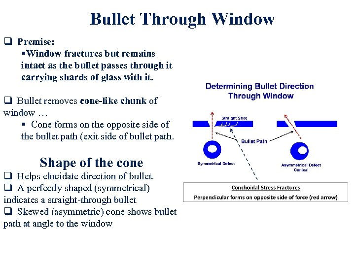 Bullet Through Window q Premise: §Window fractures but remains intact as the bullet passes