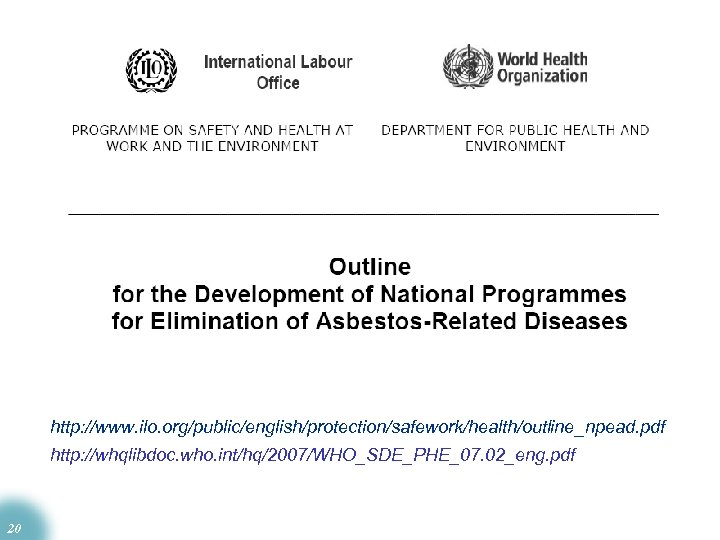 http: //www. ilo. org/public/english/protection/safework/health/outline_npead. pdf http: //whqlibdoc. who. int/hq/2007/WHO_SDE_PHE_07. 02_eng. pdf 20