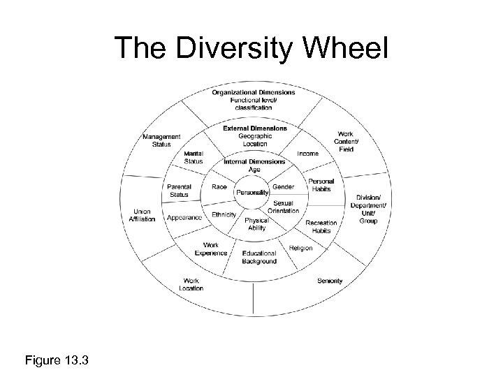 The Diversity Wheel Figure 13. 3