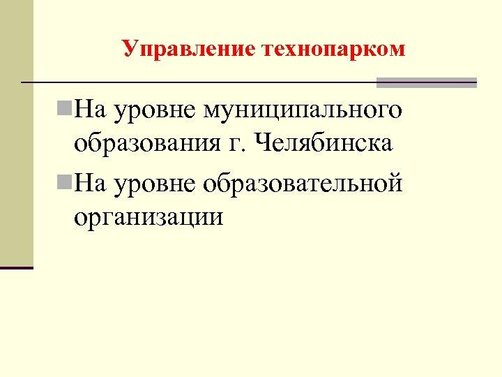 Управление технопарком n. На уровне муниципального образования г. Челябинска n. На уровне образовательной организации