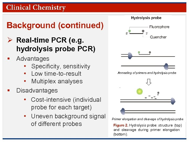 Background (continued) Ø Real-time PCR (e. g. hydrolysis probe PCR) § Advantages • Specificity,