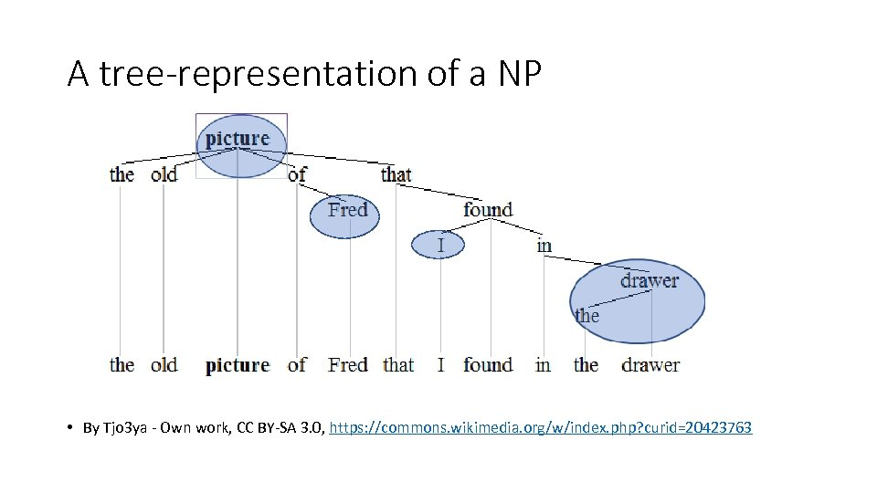 A tree-representation of a NP • By Tjo 3 ya - Own work, CC