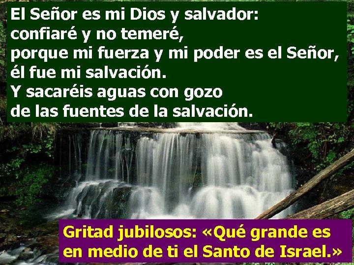 El Señor es mi Dios y salvador: confiaré y no temeré, porque mi fuerza