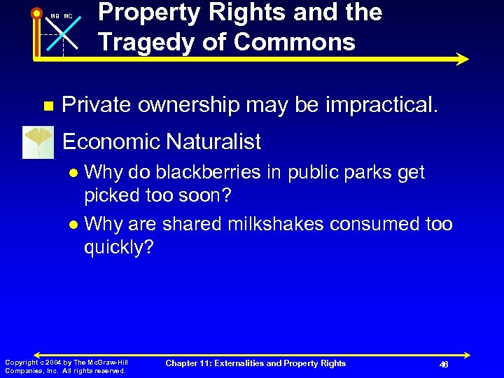 MB MC Property Rights and the Tragedy of Commons n Private ownership may be