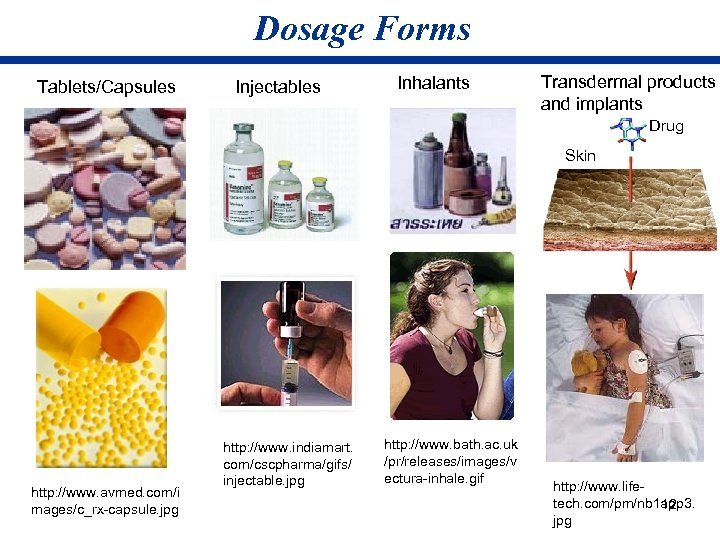 Dosage Forms Tablets/Capsules Injectables Inhalants Transdermal products and implants Drug Skin http: //www. avmed.
