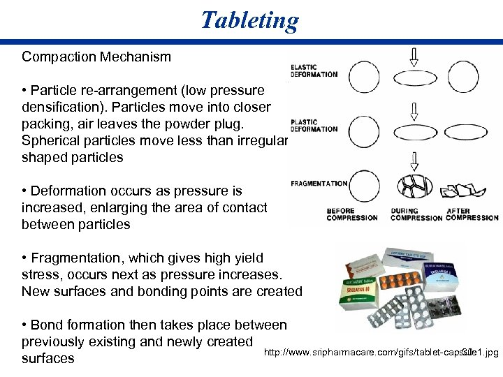 Tableting Compaction Mechanism • Particle re-arrangement (low pressure densification). Particles move into closer packing,